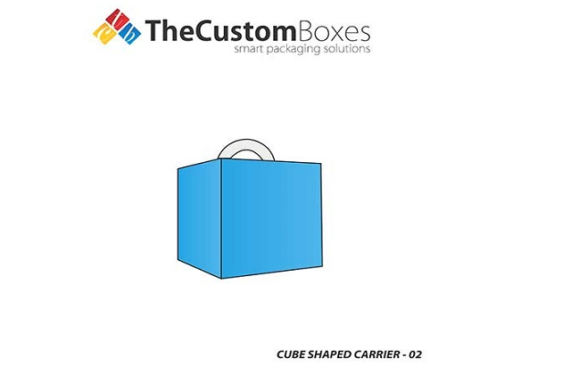 cube shaped carrier back