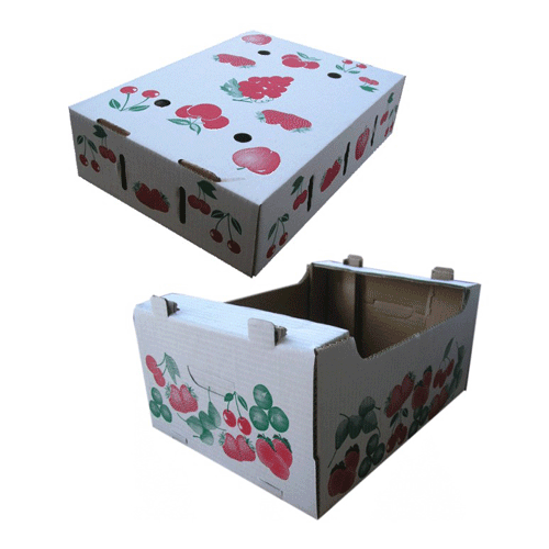 Gift Cardboard Boxes packaging solutions