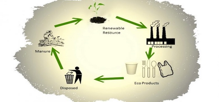 Eco-Friendly-Growth-Expansion-Vs-Plastic-Material-from-Last-Decade